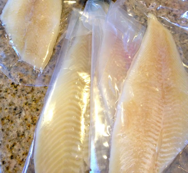 frozen fish filets