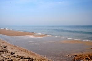 ocean in the morning