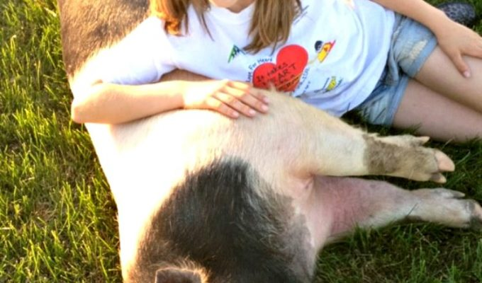 What Does Agriculture Look Like to You? Celebrating FFA Week